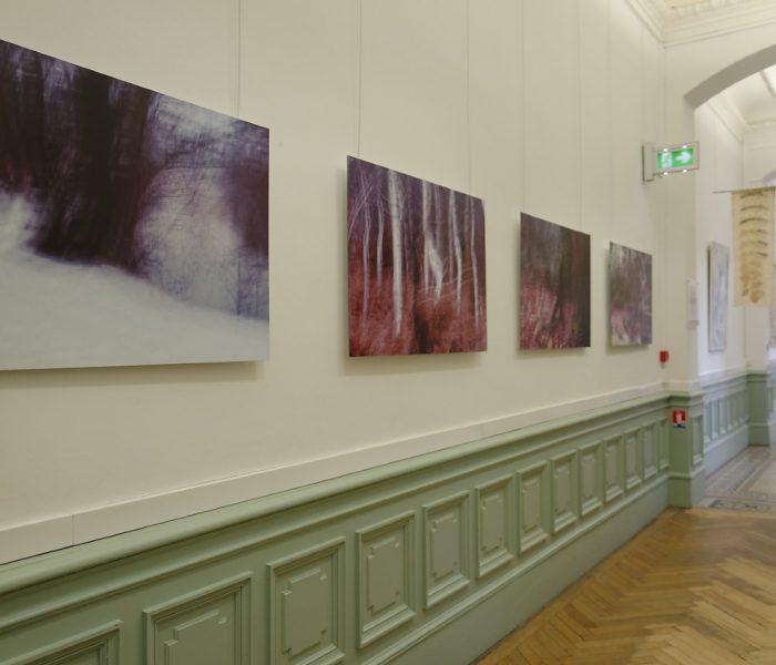 """exposition Shinrin-Yoku de mapie des vignes et Helena Sellergren.""""À la lueur des saisons"""" - photographies 70X105 cm : Philippe Cadu"""