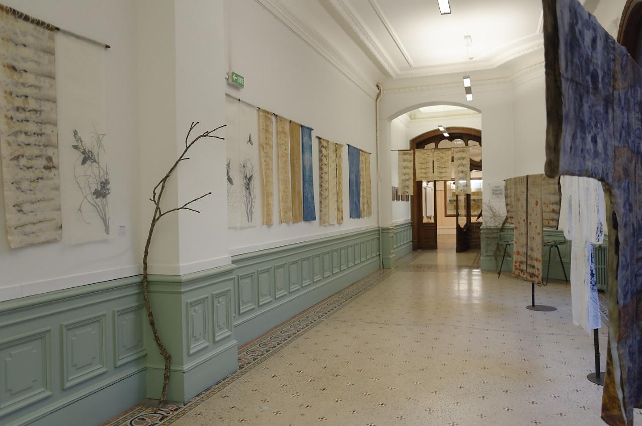Galerie INGRES : exposition Shinrin-Yoku de mapie des vignes et helena sellergren.
