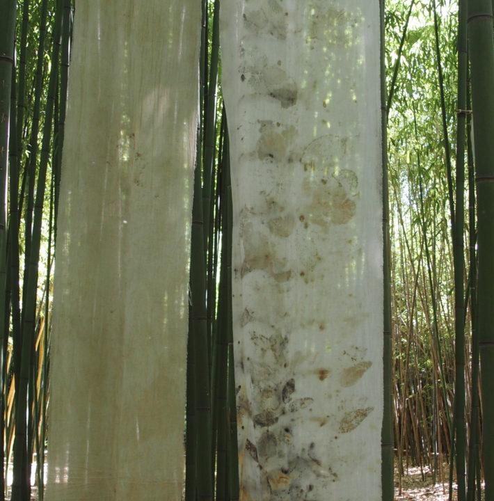 exposition Shinrin-Yoku de mapie des vignes et helena sellergren.kakemonos, voile de coton et coton, empreintes de feuilles de ronces, d'eucalyptus, ... sérigraphie